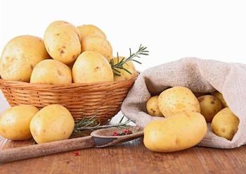 2018广州国际淀粉及马铃薯主食产业展览会