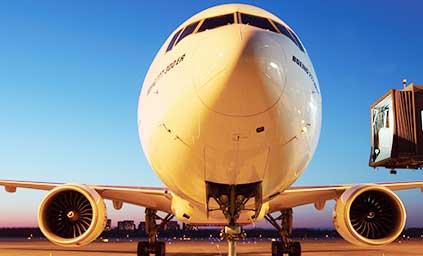 世界各地航线运输安排 整柜、散货、特殊柜运输安排