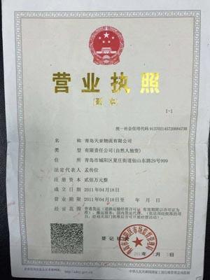 青岛到北京的货运公司  整车零担