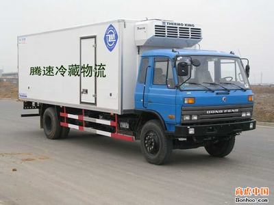 上海到海口冷藏冷冻物流 上海腾速低温运输企业