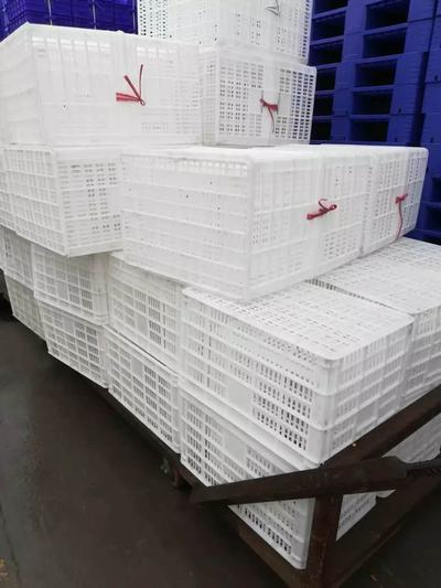 重庆塑料周转筐 农贸市场蔬菜水果筐 花椒筐生产厂家
