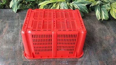 河南郑州塑料筐,郑州市乔丰蔬菜水果筐